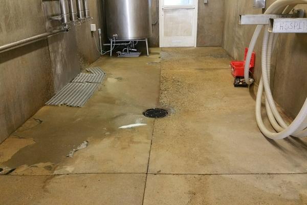 washroom-dairies-page-201257794E-B607-C073-C77C-5263460309AD.jpg