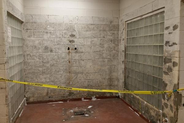 washroom-dairies-page-4C22D2706-F393-9C39-4FAB-2845A20CA35C.jpg